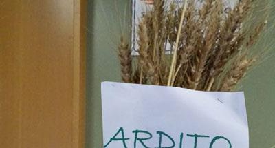 antica_varietà_ARDITO