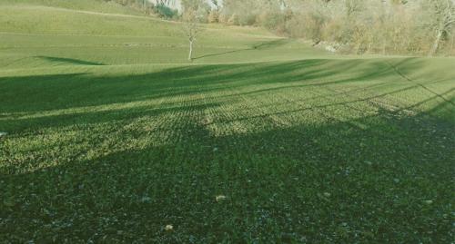 az agr Gianluca Fini Biovant