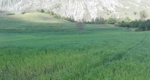 az agr Gianluca Fini Verna