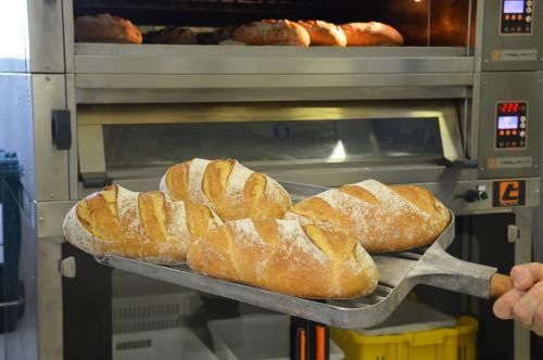 pane da varietà antica di grano