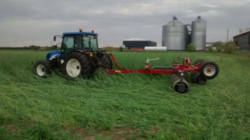 semina-su Cover Crop Granarolo